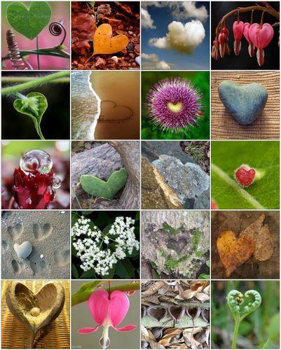 hearts_in_Nature
