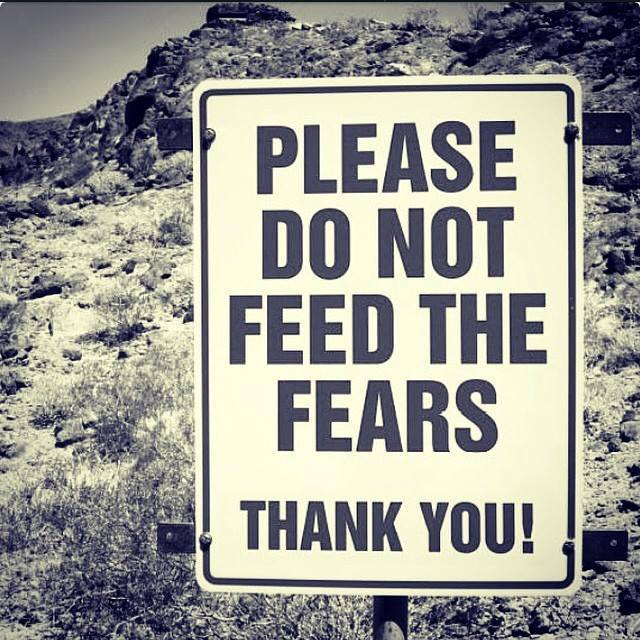 please_do_not_feed_the_fears